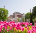Великден и Фестивал на лалето 2020 в Истанбул от Плевен, Търново и Габрово - 3 нощувки